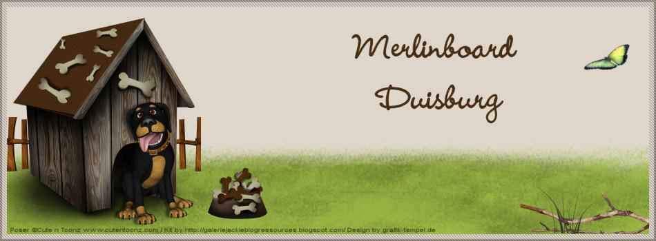 Merlinboard Duisburg
